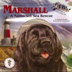 marshall cover 2